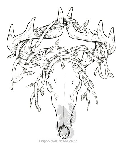 deer skull coloring pages - photo#1