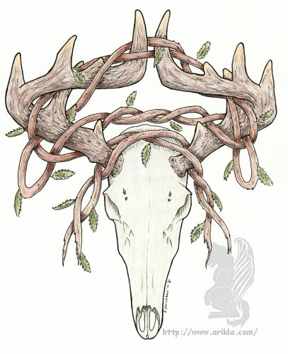 deer skull coloring pages - photo#21